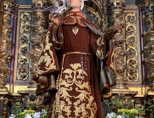 Viva San Pedro Alcantara